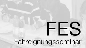 Fahreignungsseminar FES